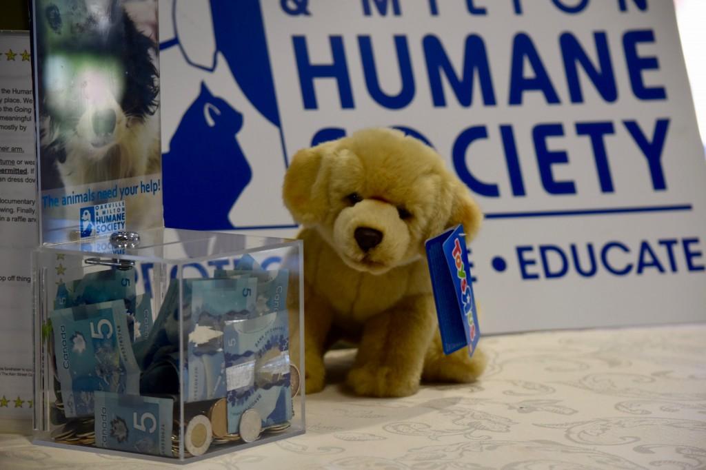 Humane Society photo 1